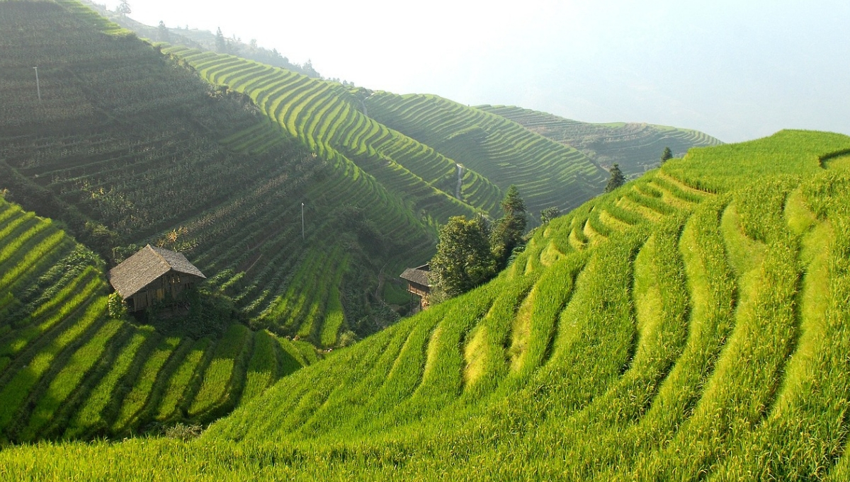 The Banaue Rice Terraces: An Unforgettable Vacation Experience